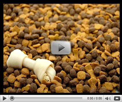 Dog Food Secrets Review By Dog Food Secrets Team