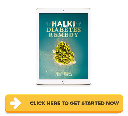 Halki Diabetes Remedy 2019 - Halki Diabetes Remedy
